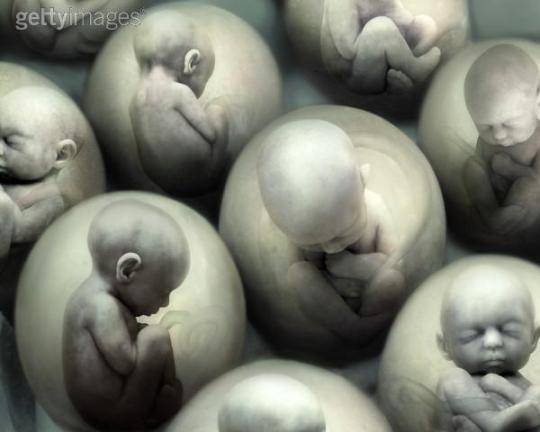 aborto.jpg
